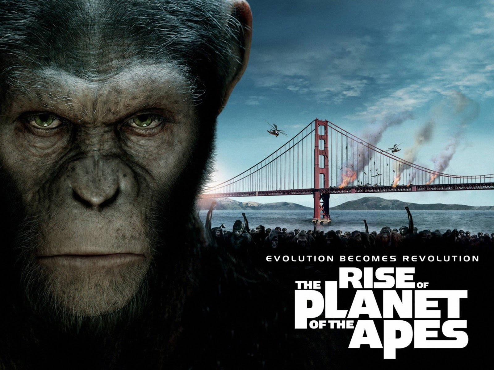 Reviewed Rise Of The Planet Of The Apes 2011